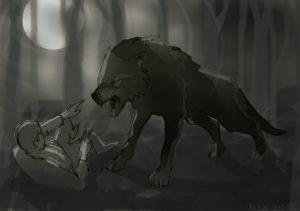 stefan et le loup gris dans les bois